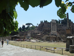 The ancient Roman Forum looking towards the Palatine Hill in Rome