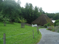 Thatched house in front of the woods at Ballenberg