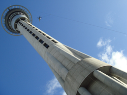 A mad person jumps off the Sky Tower in Auckland, New Zealand