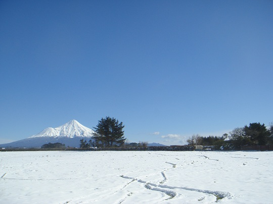 New Zealand - Mt Egmont / Taranaki after a snow dump