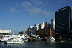 Auckland - skyline of the harbour