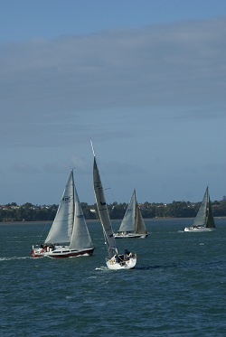 Auckland - boats on the Hauraki Gulf
