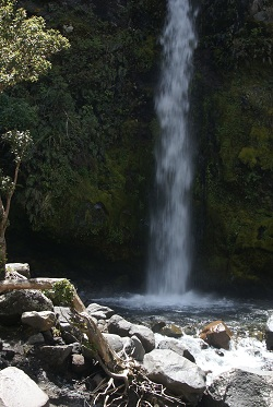 Mt Taranaki - Dawson Falls