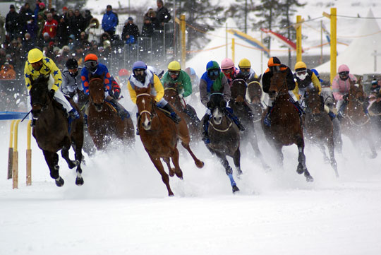 St Moritz - gallops at White Turf
