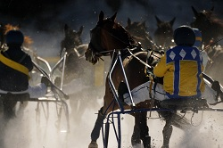 St Moritz - The Trots