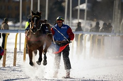 St Moritz - Skij&ouml;ring at White Turf